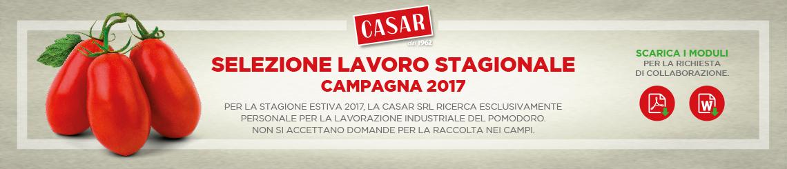 Banner_campagna_2017
